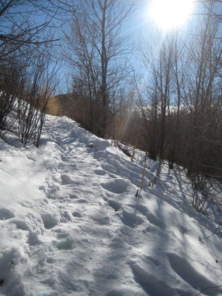 Light and shadow on the snowy path