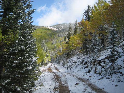 Fall snow 2
