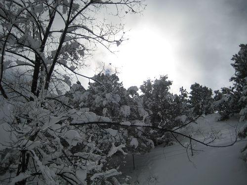 Storm 9a