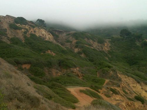 Fog on cliffs 2