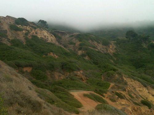 Fog on cliffs 2