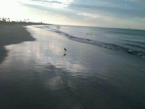 Ocean 2